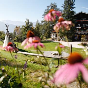 Best Economy Forum Biohotels Urlaub